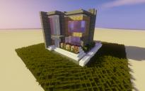 15x15 Modern Home