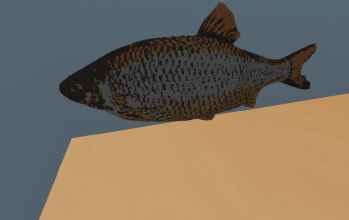 Rudd Fish