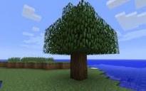 Normal minecraft tree